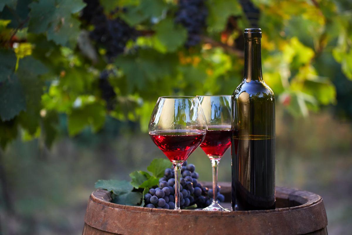 Castro in autunno: scopri le tradizioni di San Martino e del vino novello
